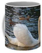 Boston Public Garden Swan Amongst The Ducks Ruffled Feathers Coffee Mug