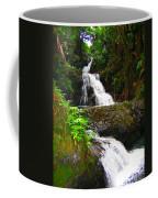 Botanic Gardens Waterfall Coffee Mug