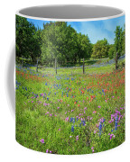 Botanical Variety Show In The Texas Hill Country Coffee Mug