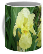 Botanical Yellow Iris Flower Summer Floral Art Baslee Troutman Coffee Mug