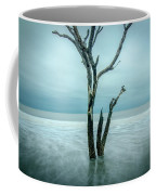 Botany Bay Plantation Edisto Island Sc Coffee Mug