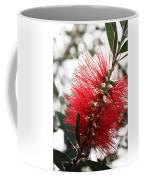 Bottlebrush Closeup Coffee Mug