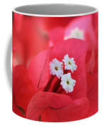 Bougainvilleas And White Coffee Mug