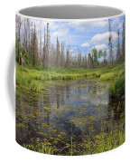 Boundary Waters Beauty Coffee Mug