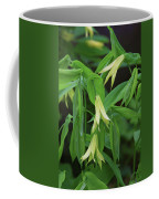 Bountiful Bellwort Coffee Mug