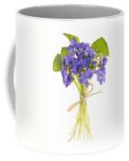 Bouquet Of Violets Coffee Mug by Elena Elisseeva