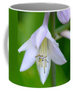 Bowing Blossom Coffee Mug