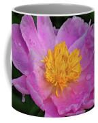 Bowl Of Beauty Peony Catching The Rain Coffee Mug