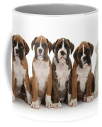 Boxer Puppies Coffee Mug by Mark Taylor