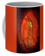 Boynton Canyon 04-343 Coffee Mug