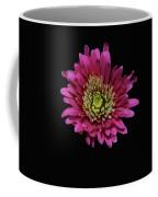 Bp13 Coffee Mug
