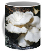 Bracket Fungus Coffee Mug