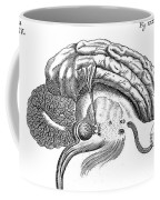 Brain And Eye, Descartes, Illustration Coffee Mug