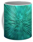 Brain Coral Coffee Mug