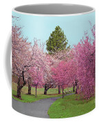 Branch Brook Cherry Blossoms II Coffee Mug