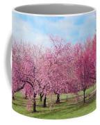 Branch Brook Cherry Blossoms Coffee Mug
