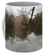 Branch And Water Coffee Mug