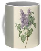 Branch With Purple Lilacs, Maria Geertruyd Barbiers-snabilie, 1786 - 1838 Coffee Mug