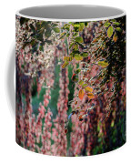 Branches Of A Tree With Colorful Leaves Shining In The Sunlight Coffee Mug