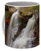 Brandywine Falls II Coffee Mug