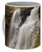 Brandywine Falls IIi Coffee Mug