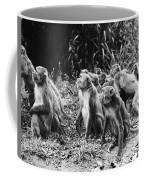 Brazil: Monkeys Coffee Mug
