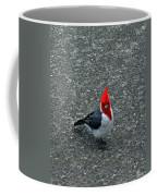 Brazillian Cardinal Coffee Mug