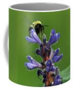 Bumble Bee Breakfast Coffee Mug