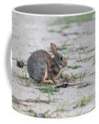 Breakfast Or Playtime Coffee Mug
