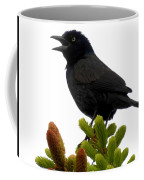 Brewer's Blackbird Coffee Mug