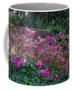 Brick Wall And Azalea Coffee Mug