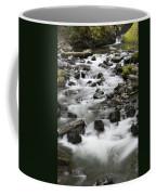 Bridal Veil Outflow Coffee Mug