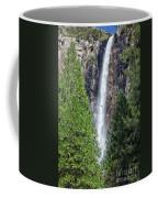 Bridalvail Fall And Raven Coffee Mug