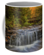 Bridge And Falls Coffee Mug