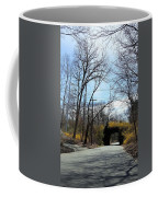 Bridge Of Colors Coffee Mug