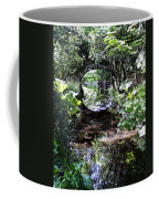 Bridge Reflection At Blarney Caste Ireland Coffee Mug