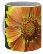 Bright And Sasy Coffee Mug
