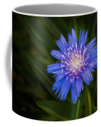 Bright Blue Aster Coffee Mug