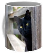 Bright Eyed Kitty Coffee Mug