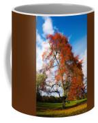 Bright Fall Colors Coffee Mug