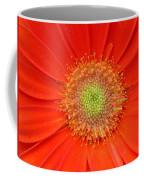 Brighteyes Coffee Mug