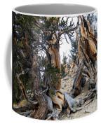 Bristlecone Forest, Ca November 2105 Coffee Mug