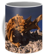 Bristlecone Pine - White Mountains Coffee Mug