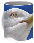 British Herring Gull Coffee Mug