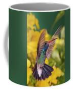 Broad-bill Pose Coffee Mug