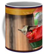 Broad-tailed Hummingbird Coffee Mug