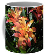 Bromeliads Coffee Mug