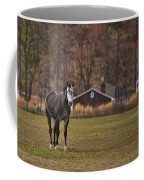Brown And White Horse Coffee Mug