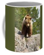 Brown Bear 3  Coffee Mug