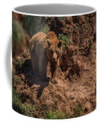 Brown Bear Watches From Steep Rocky Outcrop Coffee Mug